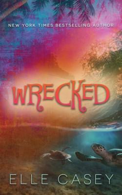 Wrecked.jpg