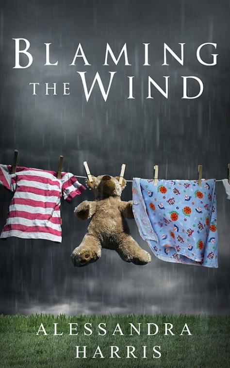 Blaming the Wind.jpg