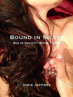 bound in silver.jpg