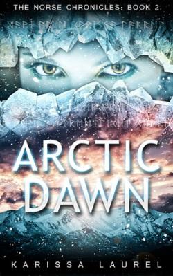 arctic dawn.jpg
